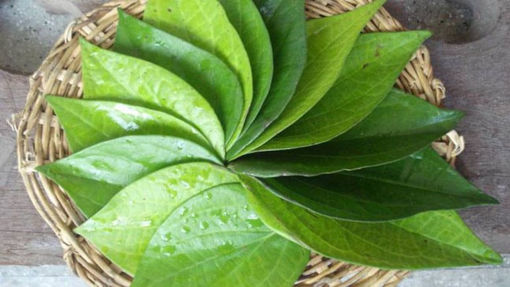 Picture of paan 1 Pc